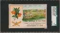 1880 Trade Card  Stevenson & Co. Baseball Scene SGC Authentic